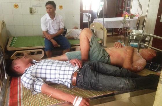 Gần 20 học sinh nhập viện vì bị ong đốt ảnh 1