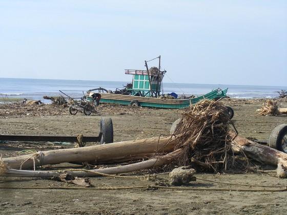 Kinh hoàng củi, rác ngập bãi biển Sầm Sơn tỉnh Thanh Hóa ảnh 1