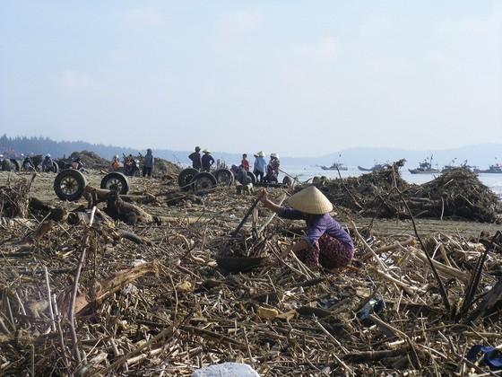 Kinh hoàng củi, rác ngập bãi biển Sầm Sơn tỉnh Thanh Hóa ảnh 5