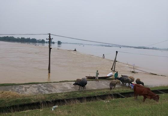 Nghệ An: 7 người chết do mưa lũ ảnh 1