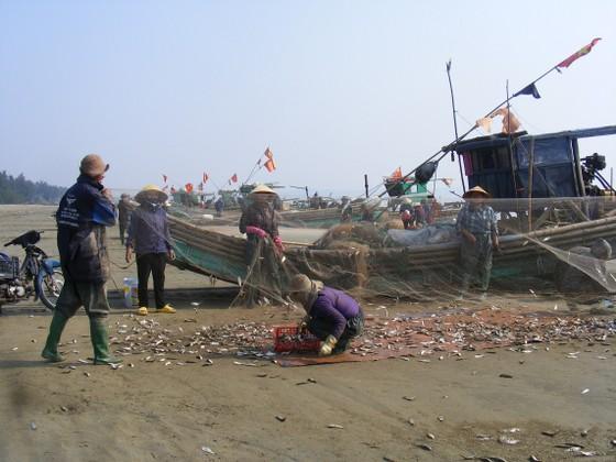 Ngư dân Thanh Hóa 'mở cửa biển', ra khơi đánh bắt đầu năm ảnh 1