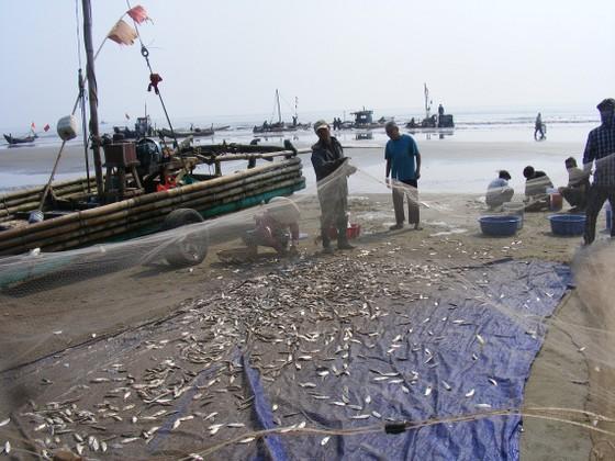 Ngư dân Thanh Hóa 'mở cửa biển', ra khơi đánh bắt đầu năm ảnh 2