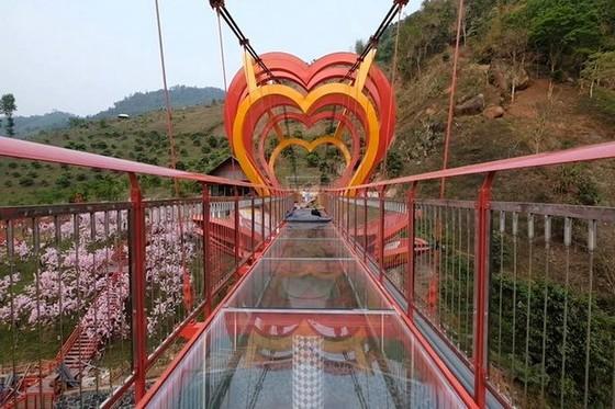 越南最高玻璃橋投入運營 ảnh 1