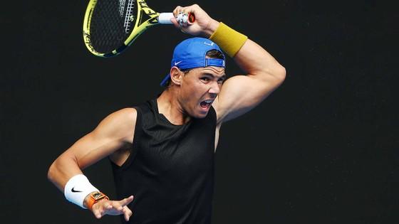 Australian Open 2019: Federer, Nadal và Murray chung 1 nhánh đấu ảnh 1