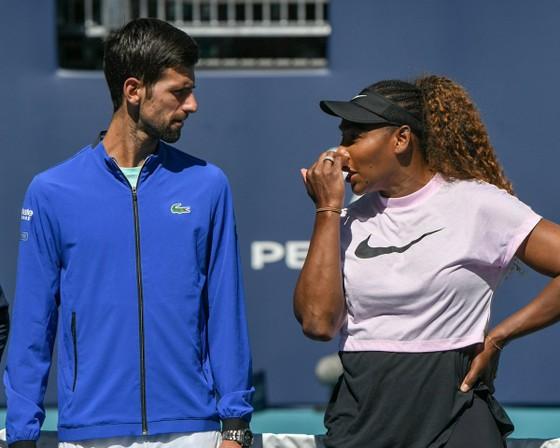 Miami Open: Kỳ vọng của Djokovic là… không có gì để kỳ vọng ảnh 2