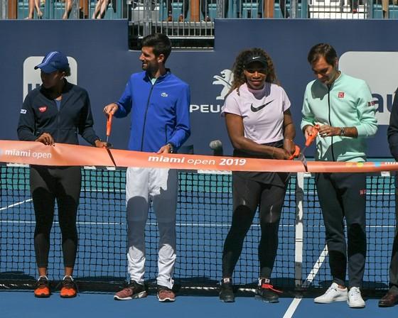 Miami Open: Kỳ vọng của Djokovic là… không có gì để kỳ vọng ảnh 1