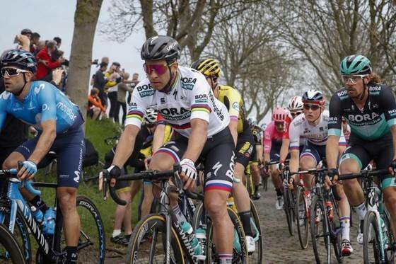 Xe đạp: Nằm ngoài tốp 10 Tour of Flanders, Sagan than vãn anh không còn như xưa ảnh 3