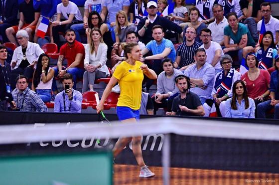 Osaka, Halep và Kvitova tranh ngôi Nữ hoàng ở Stuttgart, WTA Tour sẽ có chủ nhân của danh hiệu thứ 2 ảnh 1