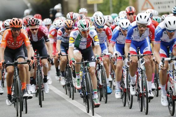 Giro d'Italia: Ewan rút lui... sau khi giành chiến thắng thứ 2, Demare chiếm Áo tím ảnh 3