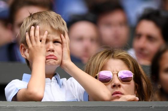 """Wimbledon: Federer thắng trận thứ 99 chỉ sau 74 phút, Berrettini muốn trả anh tiền """"dạy thêm"""" ảnh 6"""