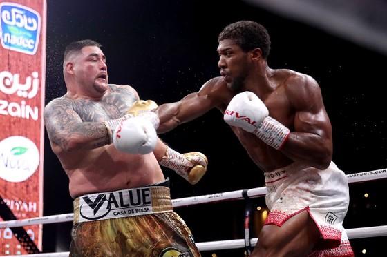 """Quyền Anh: AJ """"cơ bắp"""" báo thù """"Gã mập ù"""" Andy Ruiz, đoạt lại các đai vô địch ảnh 2"""