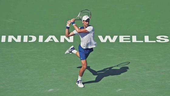Nếu chỉ tính riêng Indian Wells, Djokovic đã đăng quang 5 lần