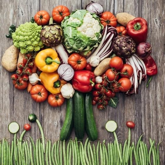 Chế độ dinh dưỡng chống Covid-19 của Djokovic