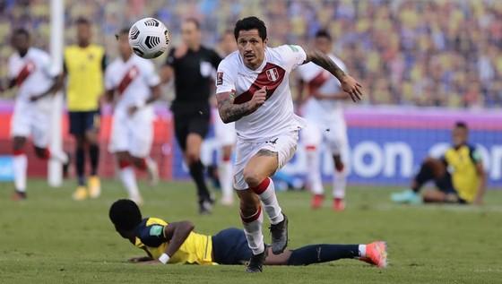 """Gianluca Lapadula ở Copa America và Manuel Locatelli ở Euro: Từng chia sẻ tuyển Italy """"B"""", nay """"đường ai nấy đi"""" ảnh 2"""