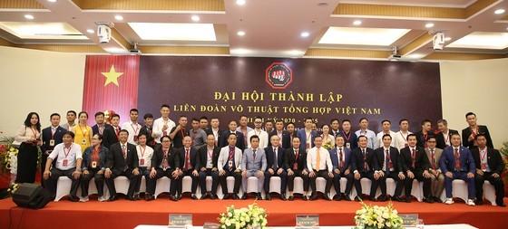 Ông Ngô Đức Quỳnh làm Chủ tịch Liên đoàn Võ thuật tổng hợp Việt Nam ảnh 1