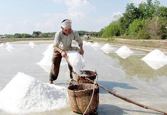 Kết nối doanh nghiệp và ứng dụng khoa học công nghệ trong nghề muối