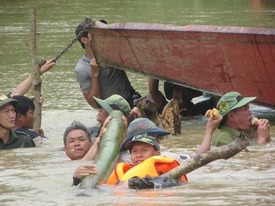 Vỡ đê, hàng trăm người dân trầm mình cứu lúa ảnh 9