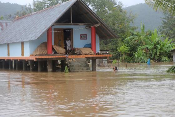 Đắk Lắk: Mưa lớn, hàng trăm nhà dân, hoa màu bị nhấn chìm ảnh 9