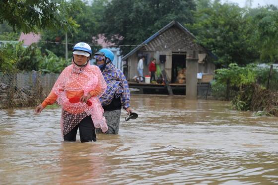 Đắk Lắk: Mưa lớn, hàng trăm nhà dân, hoa màu bị nhấn chìm ảnh 8
