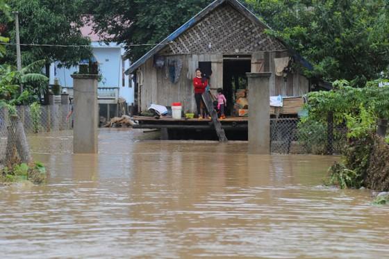 Đắk Lắk bị thiệt hại nặng do hoàn lưu bão số 6 ảnh 1