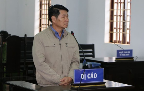 Đắk Nông: Nguyên Phó chủ tịch huyện lấn chiếm đất rừng lãnh án ảnh 1