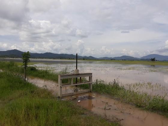 Đắk Lắk: Mưa lớn, ngập nhà dân, nhiều tuyến đường sạt lở ảnh 2