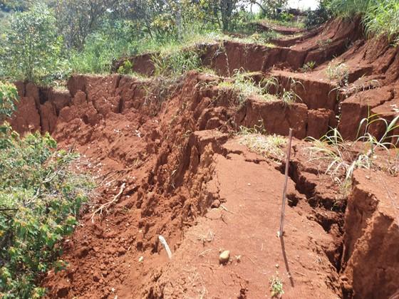 Sạt lở nghiêm trọng ở dự án đường ngàn tỷ ở Đắk Nông ảnh 3