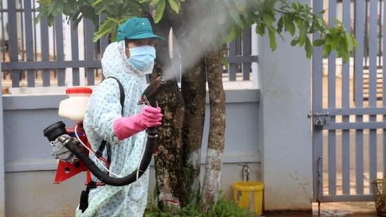 Đà Nẵng: Một trường hợp tử vong do sốt xuất huyết ảnh 1