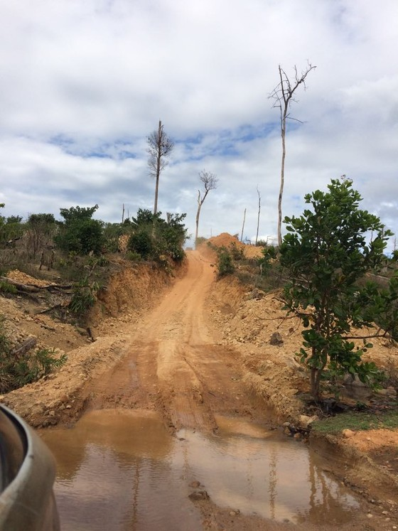 Truy tìm chủ gỗ cất giấu dưới lòng hồ thủy điện Sê San 3A ảnh 4