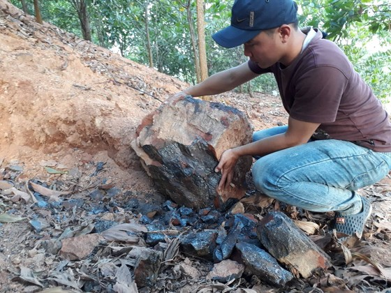 Kiểm tra, giám sát không để xảy ra khai thác mỏ quặng sắt trái phép ảnh 2