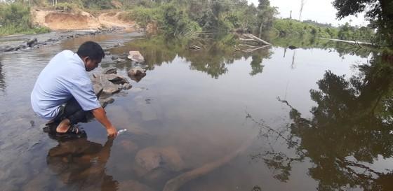 Dân tố nhà máy mì xả thải hôi thối, làm cá chết đầy sông ảnh 2