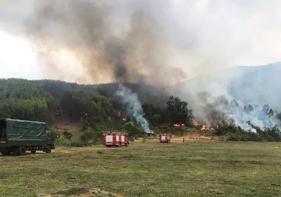Tổ chức diễn tập phòng chống cháy rừng vào... mùa mưa ảnh 1