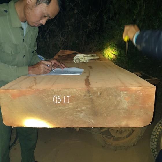 Bị chặn bắt, hàng chục lâm tặc vứt xe chở gỗ chạy tán loạn trong đêm ảnh 1