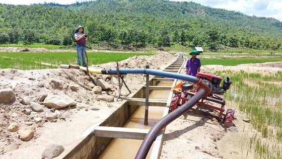 Ruộng đồng khô khát bên công trình thủy lợi trăm tỷ chưa bàn giao đã nát ảnh 2
