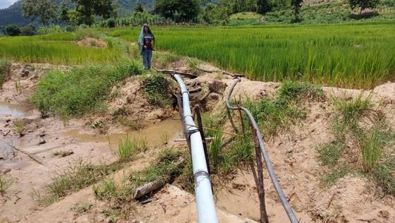 Thủy lợi hơn trăm tỷ tan nát: Cần thêm 60 tỷ đồng để đưa nước vào ruộng   ảnh 2