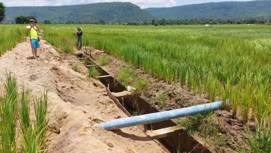 Thủy lợi hơn trăm tỷ tan nát: Cần thêm 60 tỷ đồng để đưa nước vào ruộng   ảnh 3