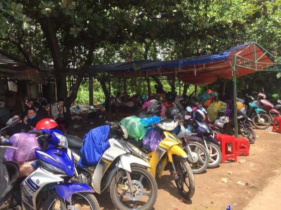 Gia Lai: Dựng lều cho người dân trú tạm trên đường về tránh dịch ảnh 1