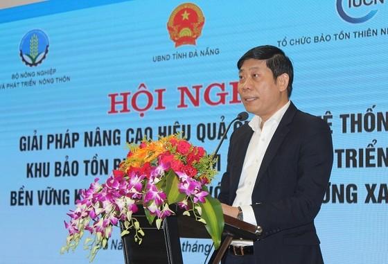 Phát hiện 767 vụ vi phạm liên quan đến khu bảo tồn biển Việt Nam ảnh 1