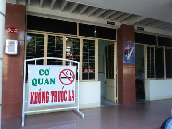 Đà Nẵng xây dựng môi trường không khói thuốc lá tại các điểm du lịch ảnh 2