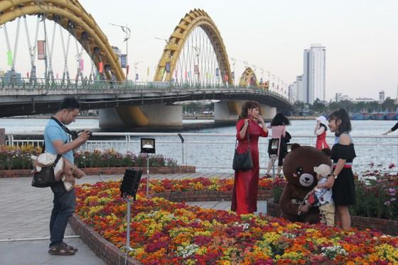 Đà Nẵng ngập tràn sắc xuân với đường hoa Tết  ảnh 5