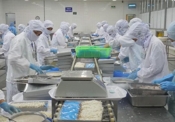Công tác chuẩn bị đại hội Đảng các cấp tại quận Sơn Trà ảnh 5
