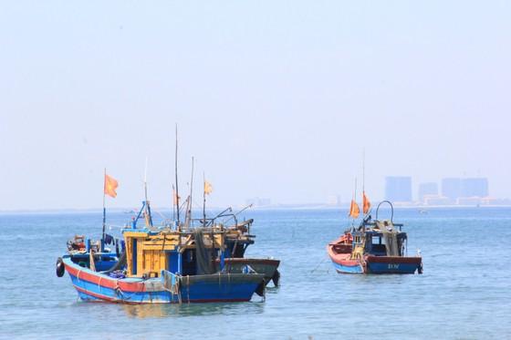 Bảo vệ môi trường biển từ mô hình 'Tổ bảo vệ cộng đồng' ảnh 4