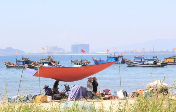 Bảo vệ môi trường biển từ mô hình 'Tổ bảo vệ cộng đồng' ảnh 3