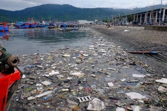 Chi hơn 27 tỷ đồng xóa ô nhiễm tại âu thuyền Thọ Quang, Đà Nẵng ảnh 1