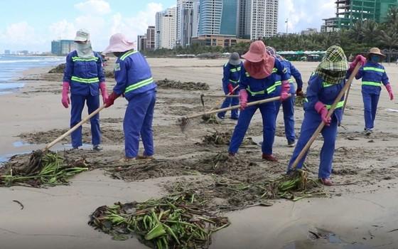 Đà Nẵng thu gom hơn 1.300 tấn rác phát sinh do bão số 5 ảnh 4
