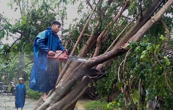 Quảng Bình mưa trắng trời, Huế cây cối ngã đổ ảnh 23