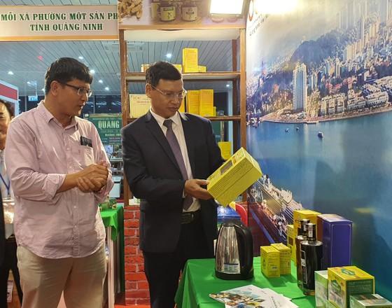 Khai mạc Hội chợ Quốc tế Thương mại, Du lịch và Đầu tư hành lang kinh tế Đông Tây - Đà Nẵng 2020 ảnh 2