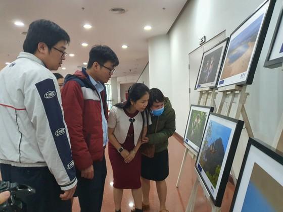 450 tác phẩm tham gia Cuộc thi Sáng tác Ảnh năm 2020 với chủ đề 'Đà Nẵng - Hành động vì thiên nhiên' ảnh 1
