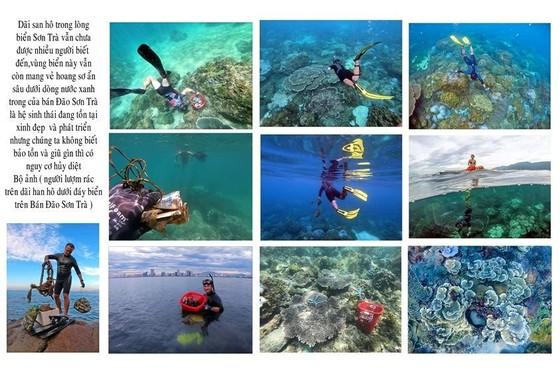 450 tác phẩm tham gia Cuộc thi Sáng tác Ảnh năm 2020 với chủ đề 'Đà Nẵng - Hành động vì thiên nhiên' ảnh 4