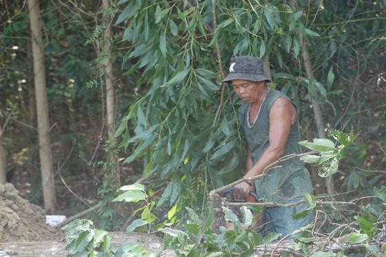 Người dân hiến đất làm đường, xây dựng nông thôn mới ảnh 2